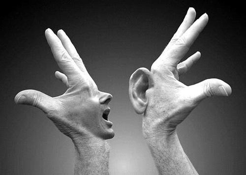 Saber Ouvir 15