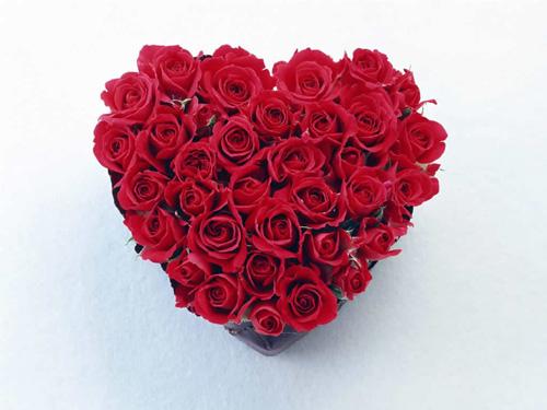 Rosa Como Uma Flor - Assim Era Meu Amor 9
