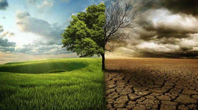 Mudanças climáticas: nossos esforços são suficientes? 35